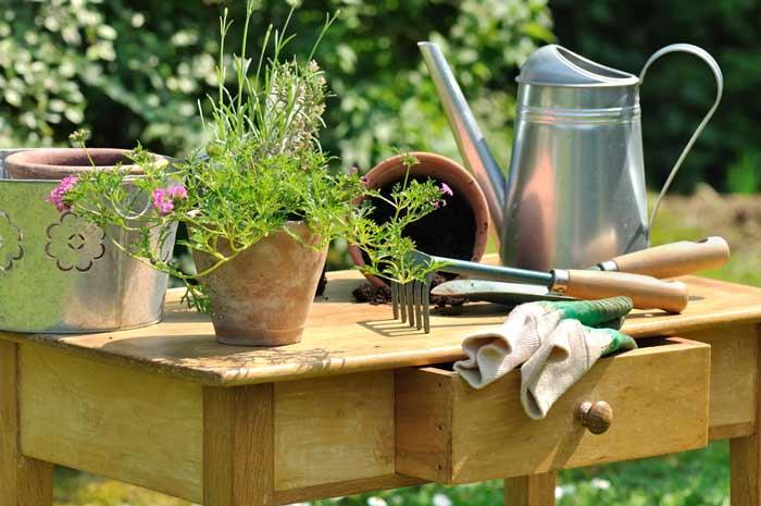 Pflanztisch mit Schublade - praktisch und dekorativ depositphotos.com
