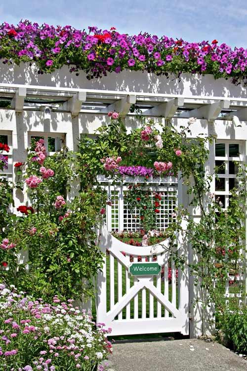 Rosenbogen mit Eingangstür - depositphotos.com